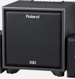 Roland Roland CM-220 200Watt 2.1 Monitor System (includes speaker stands)