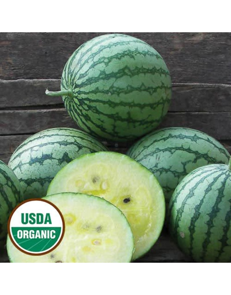 Seed Saver's Exchange Watermelon, Petite Yellow