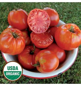 Seed Saver's Exchange Tomato, Italian Heirloom
