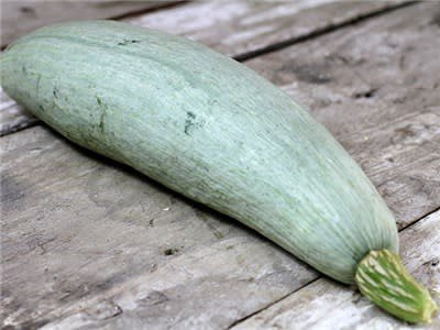 Baker Creek Seeds Winter Squash, Guatemalan Blue