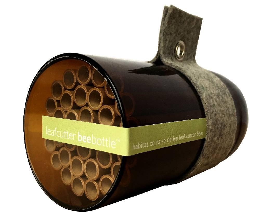 Bee Bottle - Leafcutter Bee
