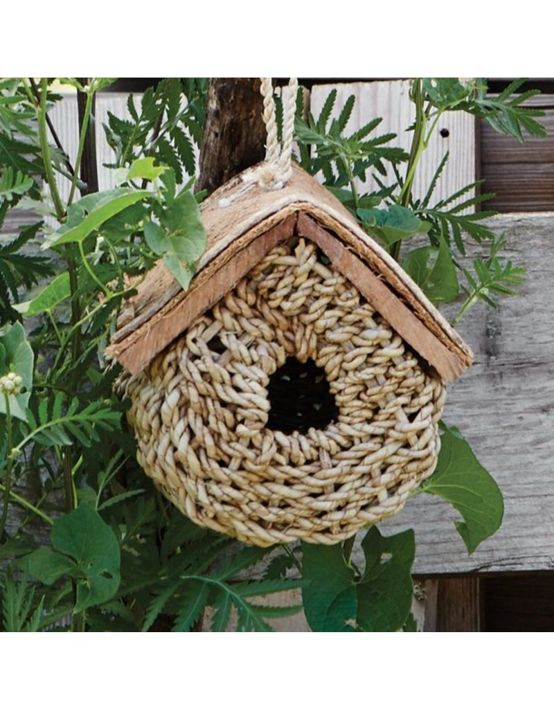 Birdhouse - Buli