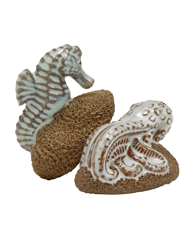 Foot Scrubber - Seahorse