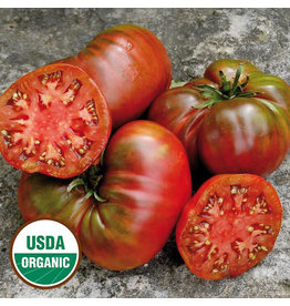 Seed Saver's Exchange Tomato, Black Sea Man