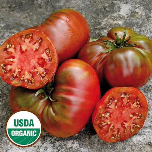 Seed Saver's Exchange Tomato - Black Sea Man