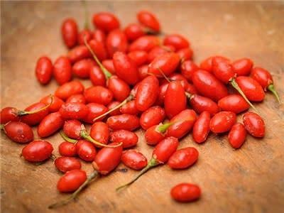 Baker Creek Seeds Goji Berry, Scarlet