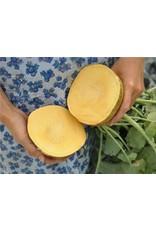 Baker Creek Seeds Rutabaga, Navone Yellow Cabbage Turnip