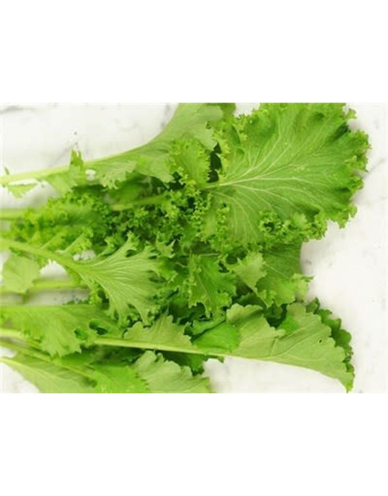 Baker Creek Seeds Mustard Greens, Southern Giant Curled