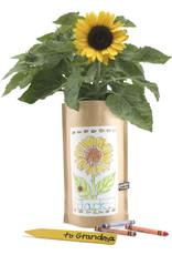 Garden in a Bag - Sunflower Kids