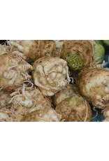 Celeriac - Giant Prague