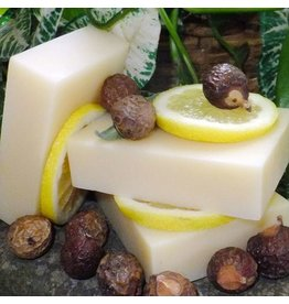 Shampoo Bar - Soapnuts Citrus Mint