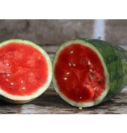 Watermelon - Strawberry variety