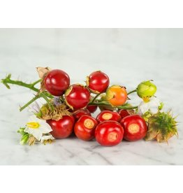 Baker Creek Seeds Garden Berry, Litchi Tomato