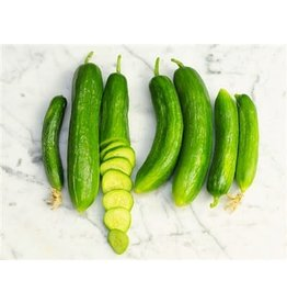 Baker Creek Seeds Cucumber, Beit Alpha