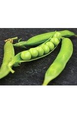 Baker Creek Seeds Pea, Lincoln Garden