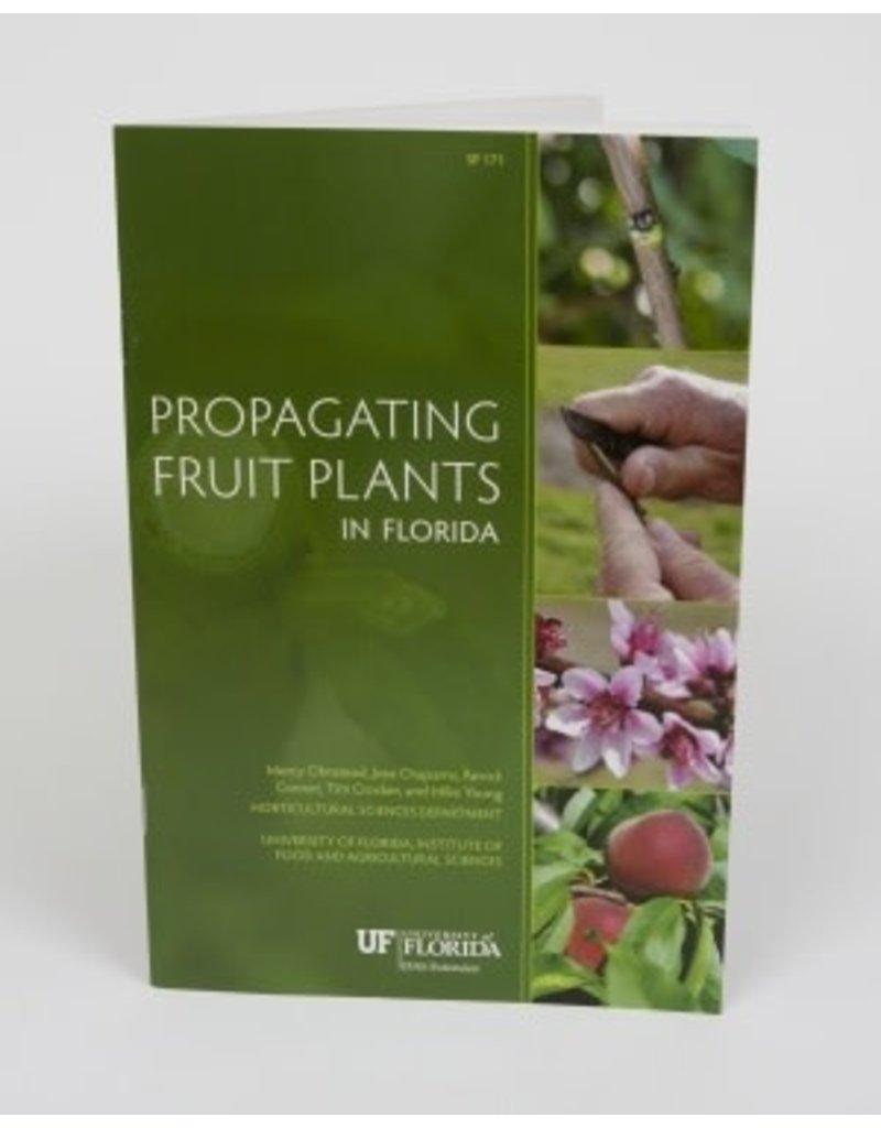 Propagating Fruit Plants in Florida