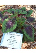 Vegetable Amaranth, Merah