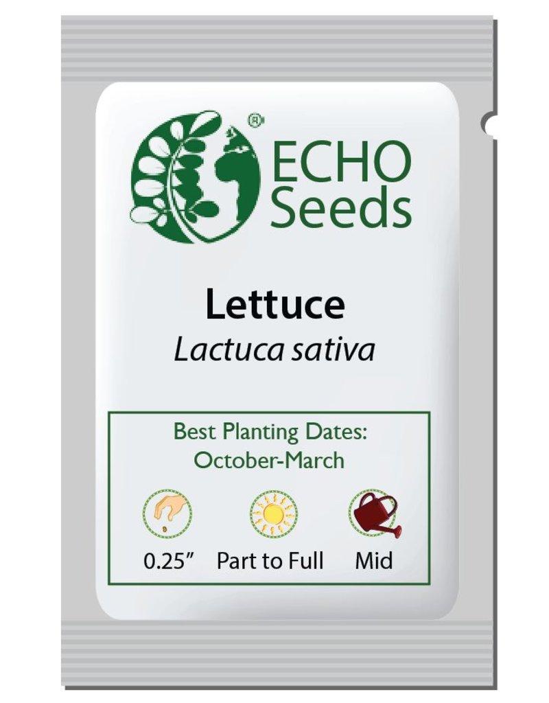 Lettuce, Queensland