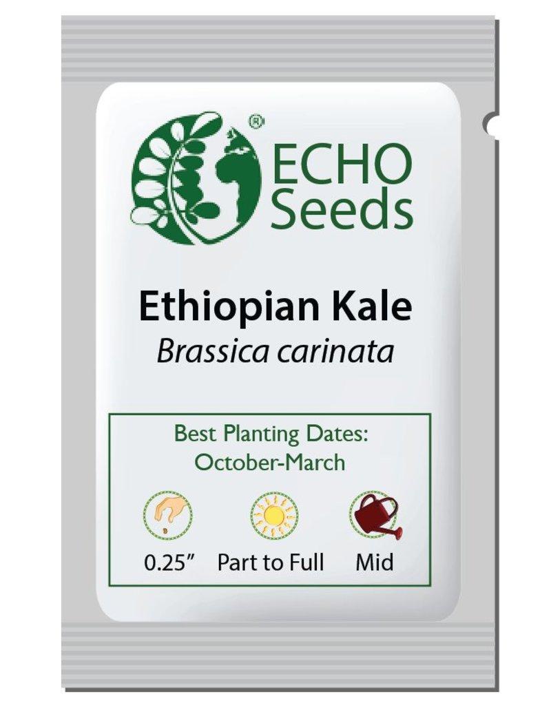 ECHO Seed Bank Kale, Ethiopian
