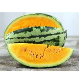 Baker Creek Seeds Watermelon, Orangeglo