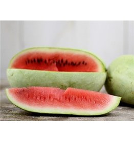 Baker Creek Seeds Watermelon, Ali Baba