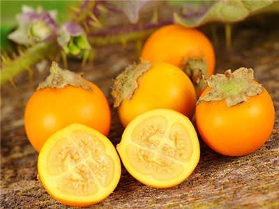 Baker Creek Seeds Garden Berry, Naranjilla