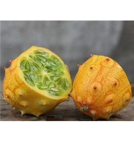 Baker Creek Seeds Jelly Melon, African Horned Cucumber, Kiwano
