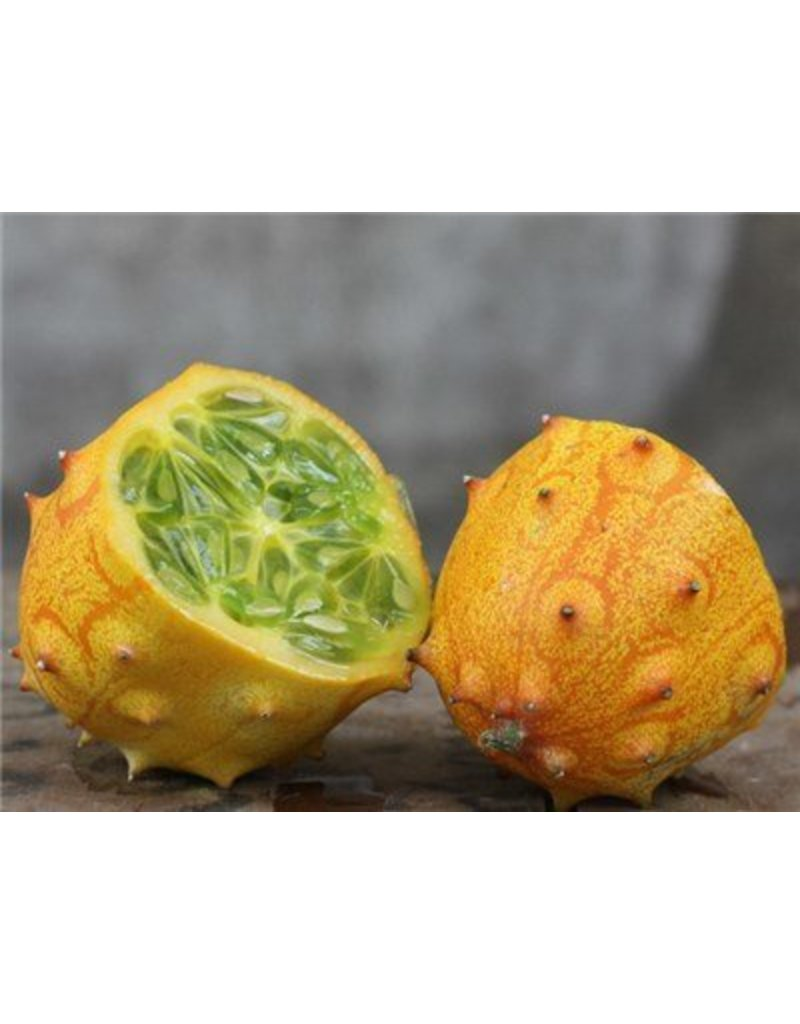 Baker Creek Seeds Jelly Melon, African Horned Cucumber, Kiwano