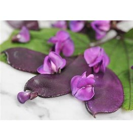 Baker Creek Seeds Hyacinth Bean, Moonshadow