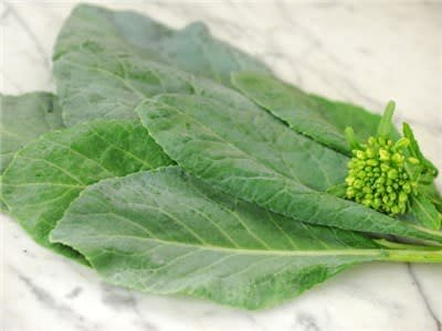 Baker Creek Seeds Chinese Kale, Yod Fah