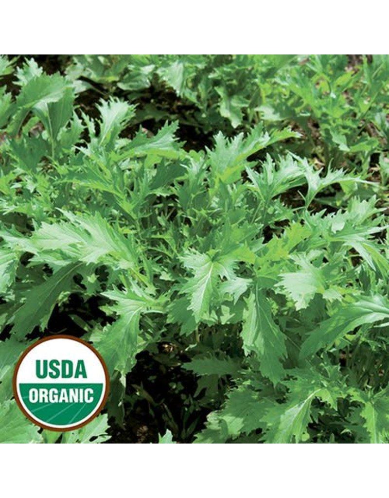 Seed Saver's Exchange Asian Green, Mizuna