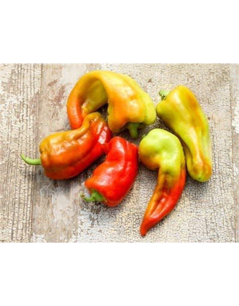Baker Creek Seeds Pepper, Cubanelle Sweet