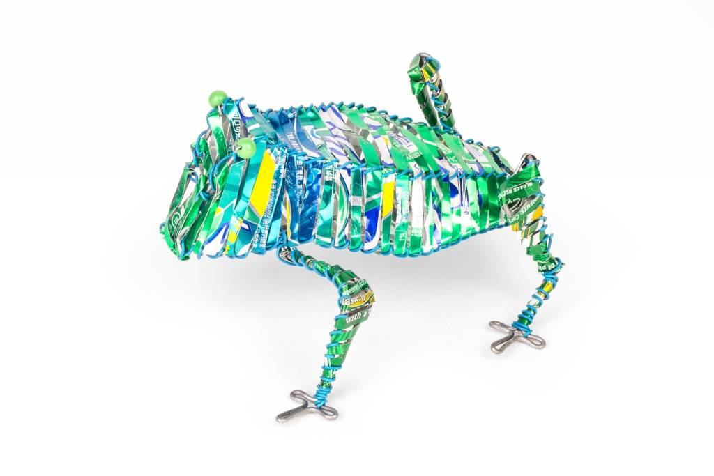 Frog Canimal