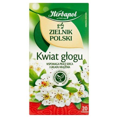 HERBAPOL Zielnik Polski Kwiat Glogu Herbata 20 sasz