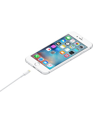 Apple Apple Lightning to USB Cable (1m)