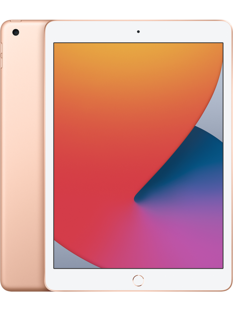 Apple Apple 10.2-inch iPad (8th Gen)