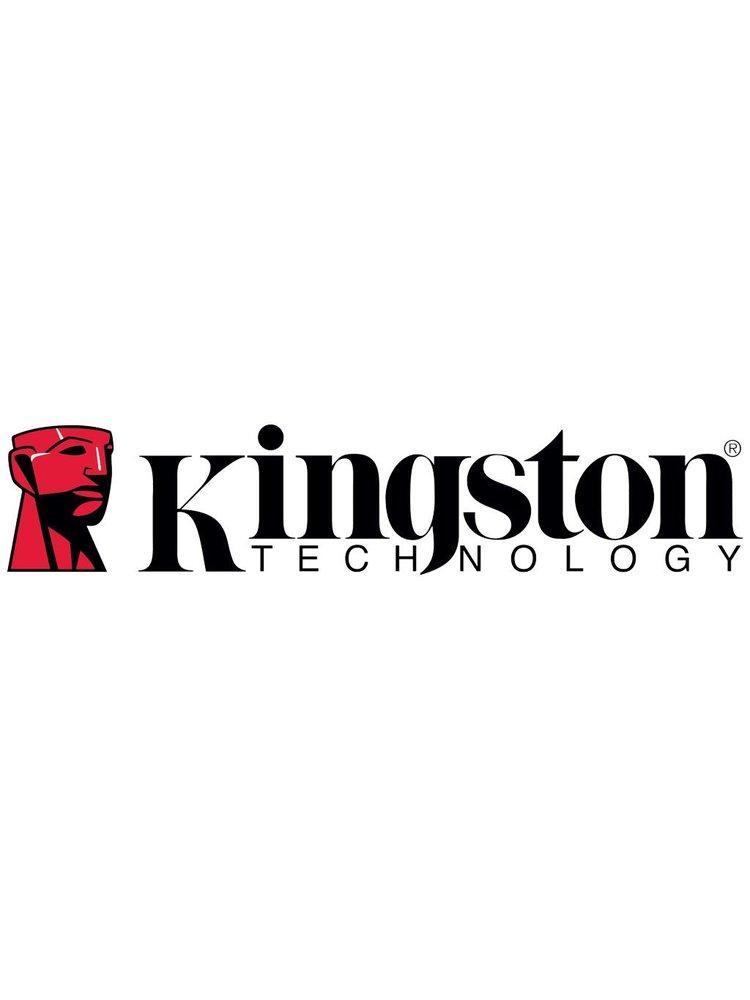 Kingston Kingston Flash Drives