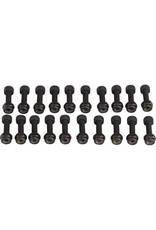 RaceFace RaceFace Chester Pedal Pin Kit, 20 Pins Black