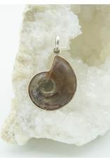 Pendentif Ammonite