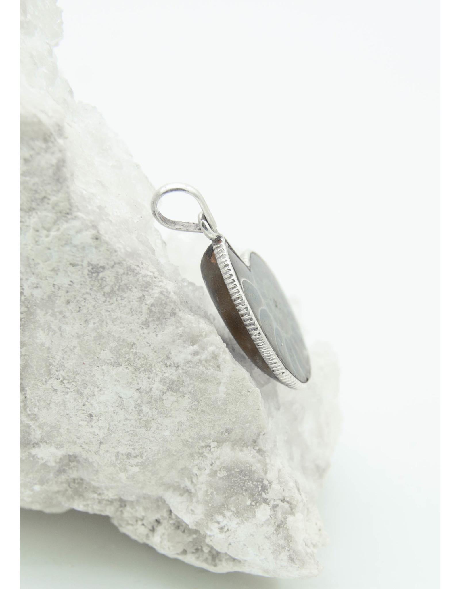 Ammonite Pendant