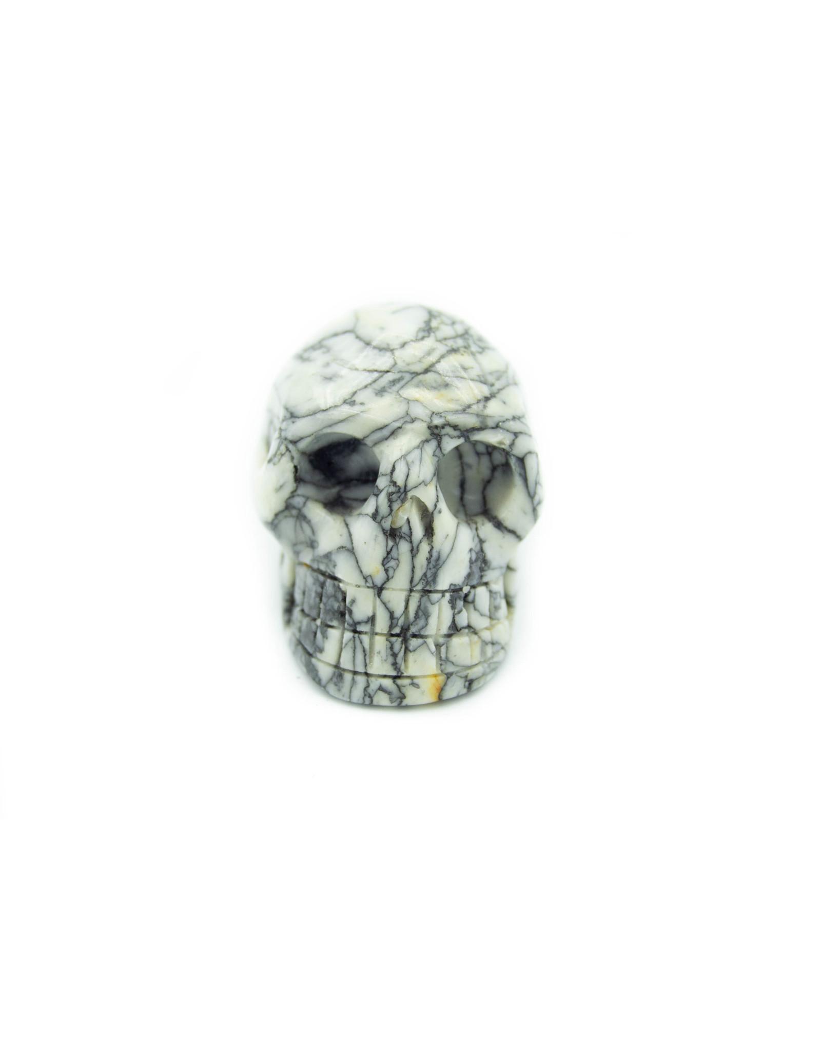 Crâne Pinolite