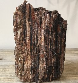 Nature's Expression Raw Piece of Black Tourmaline with Mica