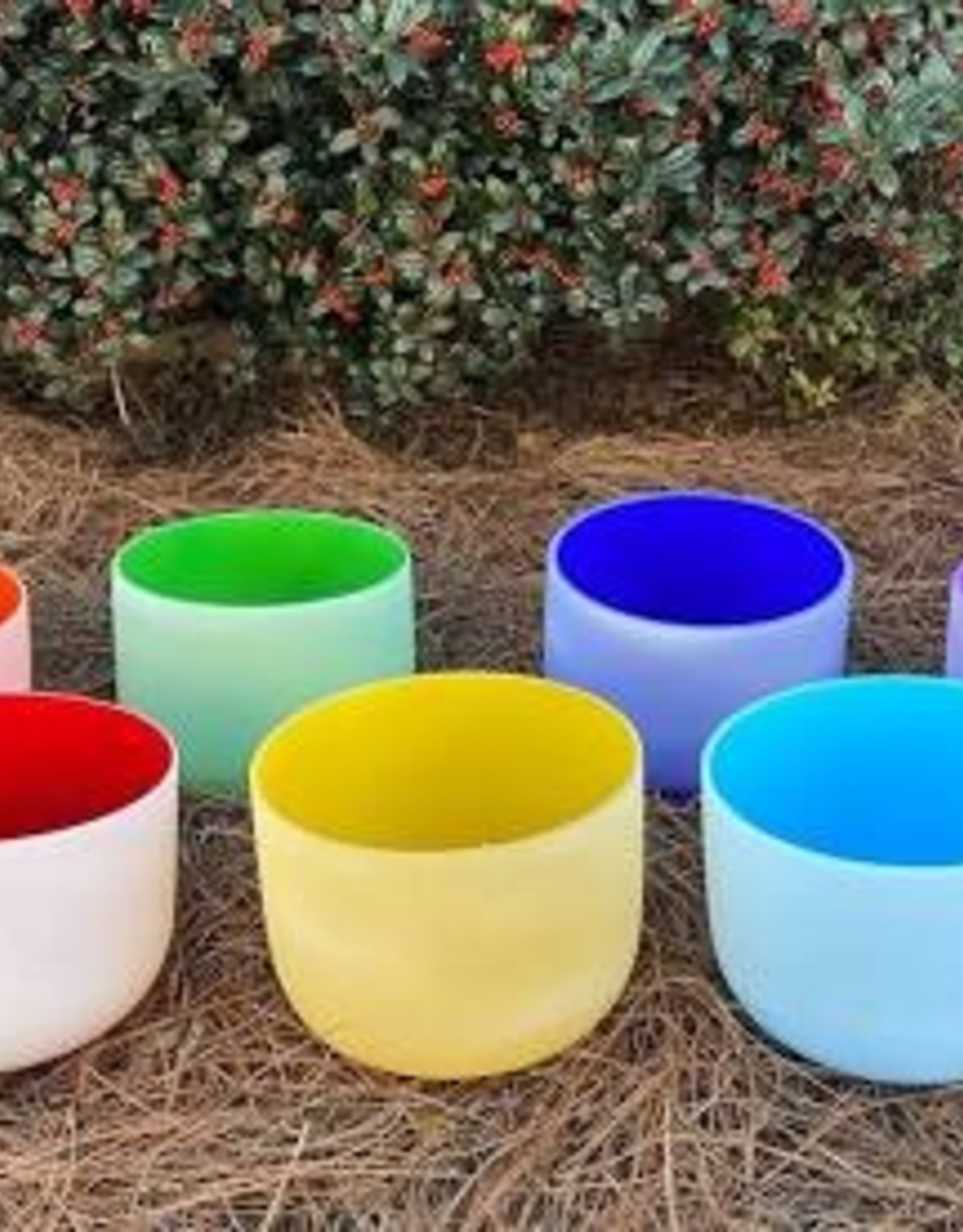 Bright Int. Trade Center Colored Frosted Crystal Bowl
