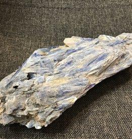 Family Rocks Large Kyanite in matrix