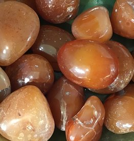 Family Rocks Carnelian Tumbled EX-LG Tumbled Stone
