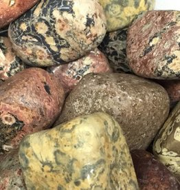 Nature's Expression Large Leopard skin Jasper Tumbled Stone