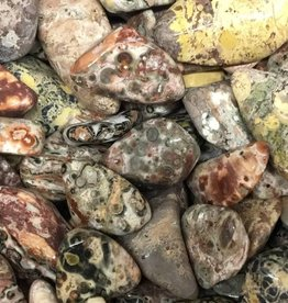 Nature's Expression Leopardskin Jasper Tumbled Stone