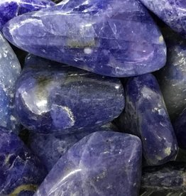 Family Rocks Sodalite Tumbled Stone - regular