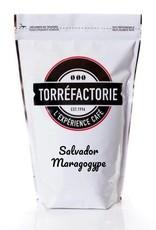 Salvador Maragogype