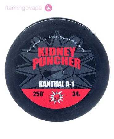 Kidney Puncher Kidney Puncher Wire